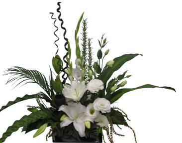 Flower Delivery Company Auckland