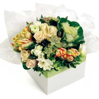 Box Flower Arrangements for delivery in Auckland