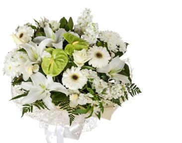 White Funeral Sympathy Flowers Delivered Auckland NZ