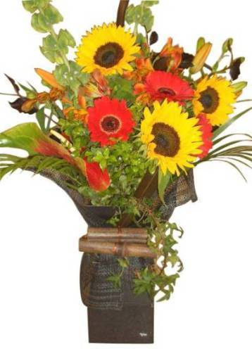 Send Flowers to Kingsland Auckland New Zealand