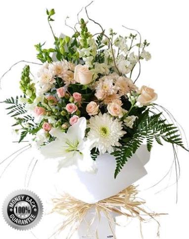 Florist Ponsonby Flowers Auckland New Zealand