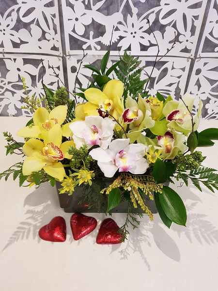 Testimonial for Orchid Garden in Ceramic Trough