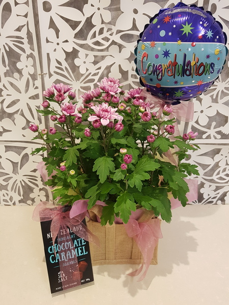 Testimonial Photo for Plant Basket with Balloon and Chocolates