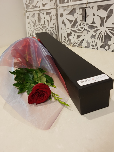 Testimonial Photo for Single Red Rose in a Gift Box