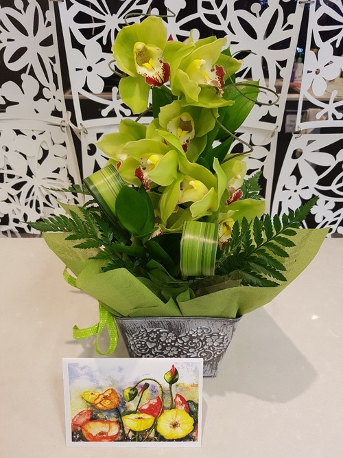 Testimonial for Love Orchids