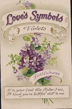 meaning of flowers violets
